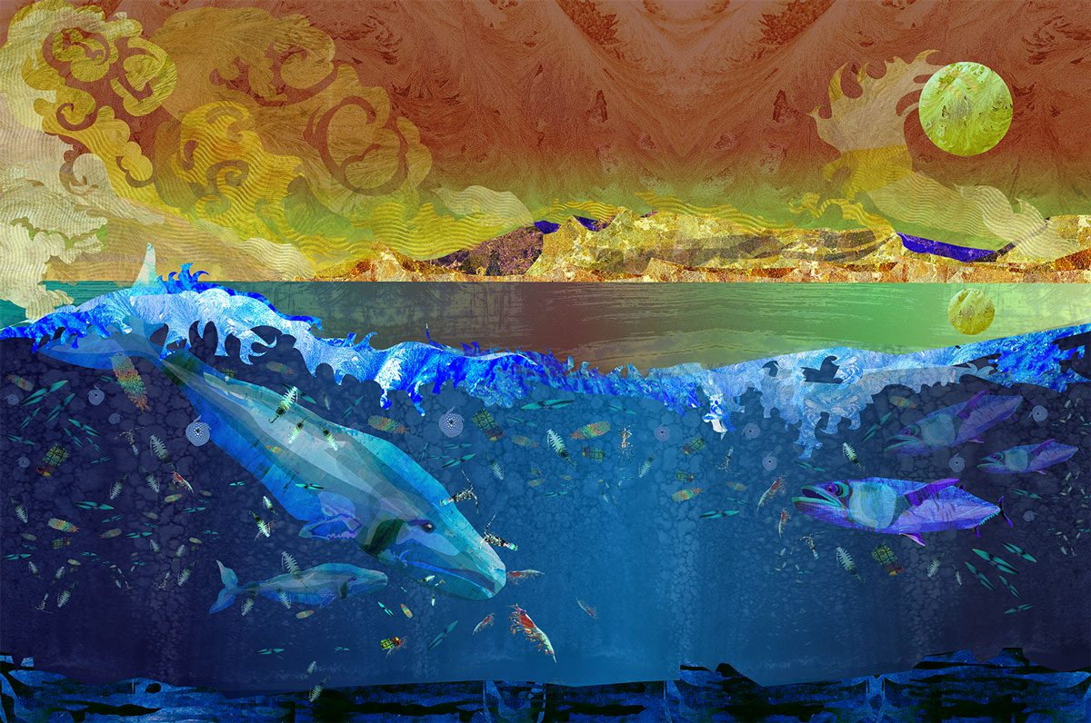 ocean art scribe arts for our planet oceans and fisheries